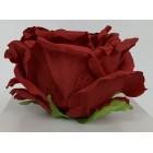 Róża wyrobowa EXCLUSIVE (6-pak) kolor RD14
